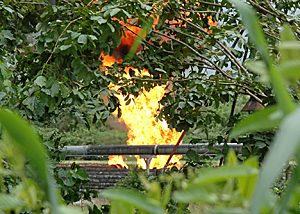 Environment group accuses Nigerian govt of insincereity over gas flaring