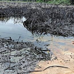Oil spill in Abia