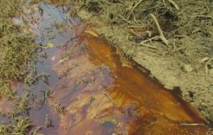 Agip oil spill