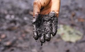 Oil spill impact.