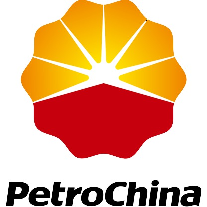 PetroChina aims to produce 25 mln T crude oil each year at Changqing by 2020