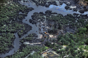 Oil-pollution-in-the-Niger-Delta.jpg
