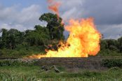 Gas-flaring-in-the-Niger-delta-174x116.jpg