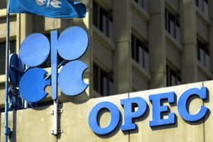 OPEC daily basket price close at $61.31/b
