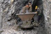 Miners-2-174x116.jpg