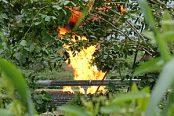 Gas-flaring-in-Nigeria-174x116.jpg