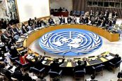 UN-Security-Council-174x116.jpg