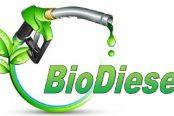 Biodiesel-174x116.jpg