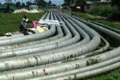 Trans-Forcados-pipeline-174x116.jpg