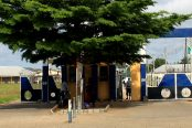 Federal-College-of-Education-technical-Omoku-Rivers-state-174x116.jpg