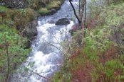 Sandvik-River-174x116.jpg