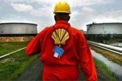 Shell-e1533075102420-174x116.jpg
