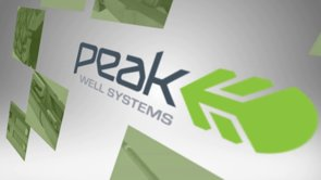 Peak Well Systems