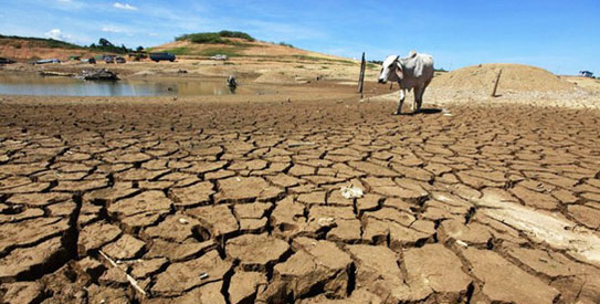 Spain proposes 47 billion euros public investment as part of 10-yr climate change plan