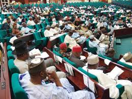 *Nigeria's House of Representatives in session.