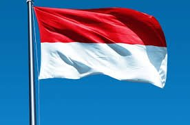 Indonesia optimistic of reaching net zero emissions by 2060 or earlier
