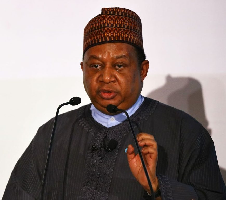 Barkindo urges 'cautious optimism' by OPEC members, allies