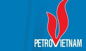 Vietnam's Ca Tam oil field starts production