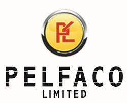 Nigeria's Pelfaco signs oil production sharing deal with Congo Republic