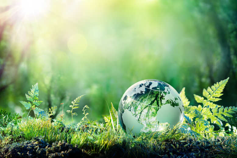 Schneider Electric cuts 5-years off carbon neutrality goal