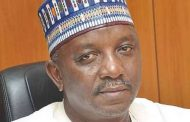Power Minister, Mamman bags Society of Engineers fellowship award