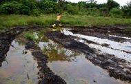 OML 59: NOSDRA, stakeholders berate Conoil over oil spill