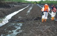 Oil bearing communities sue for peace in Ogoniland
