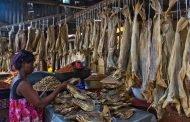 Nigeria records 2.5million metric tons of fish deficit.