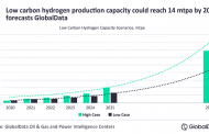 Low carbon hydrogen production capacity to reach 14 mtpa in 2030